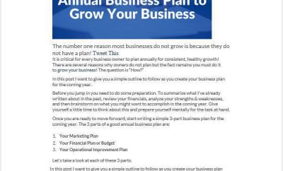 Annual Business Plan Template Word