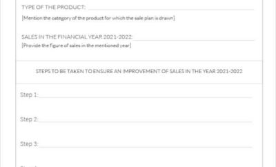 Annual Sales Business Plan Template