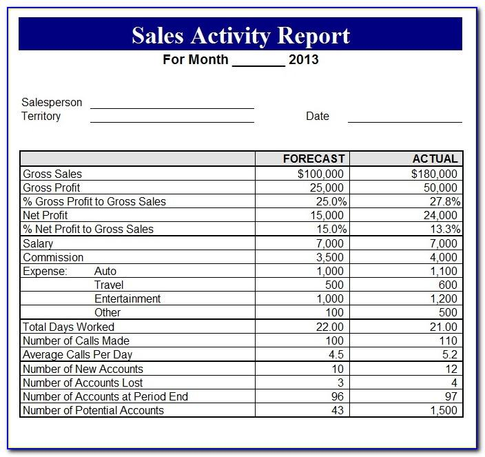 Daily Sales Activity Report Template Excel