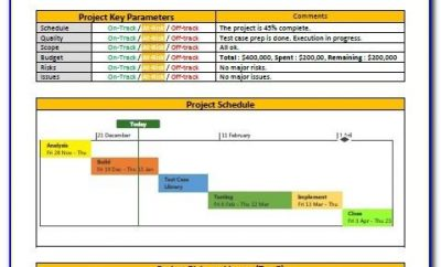 Projects Report Template Excel