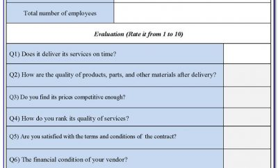 Vendor Assessment Template Example