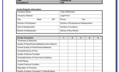 Vendor Assessment Template Excel