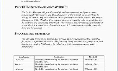 Vendor Management Plan Sample