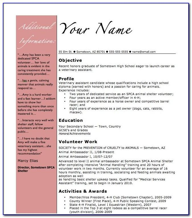 Vet Nurse Resume Sample