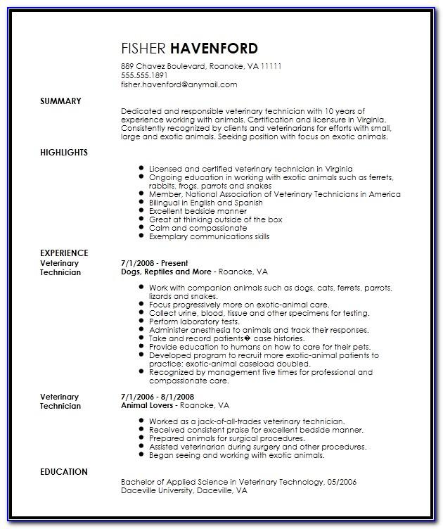 Vet Nurse Resume Templates