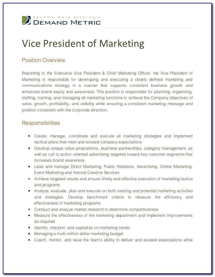 Vice President Of Marketing Job Description Template