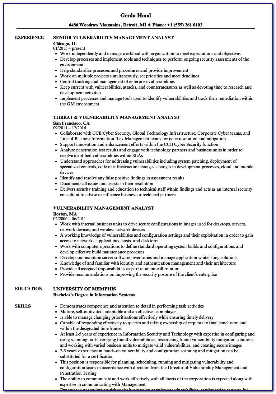 Vulnerability Assessment Sample Resume