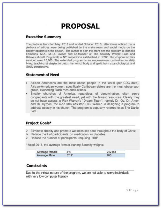 Wellness Program Proposal Format