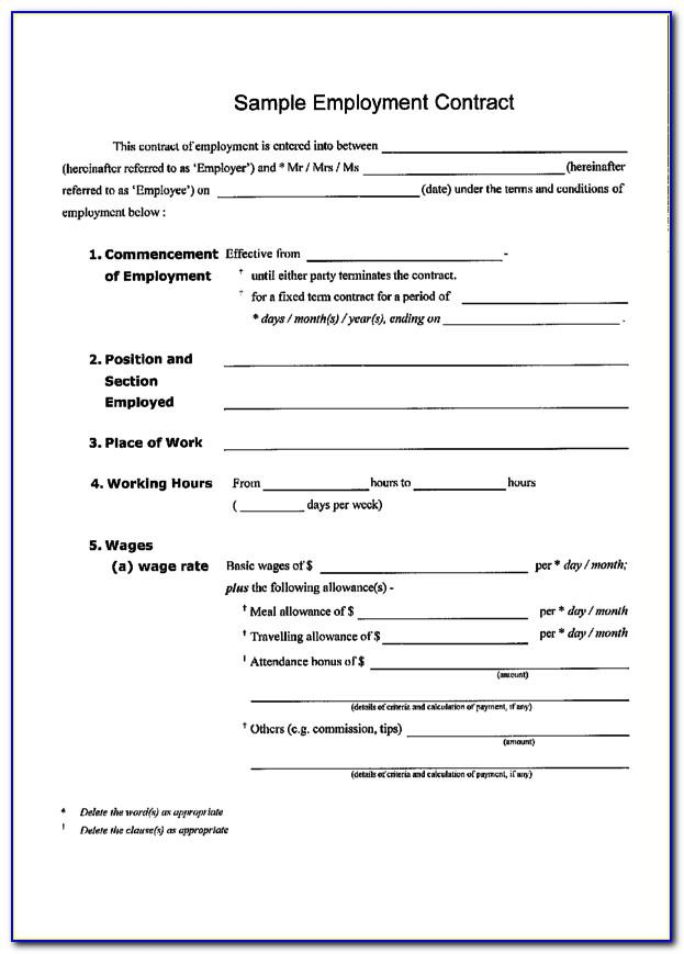 Work Contract Template Nz