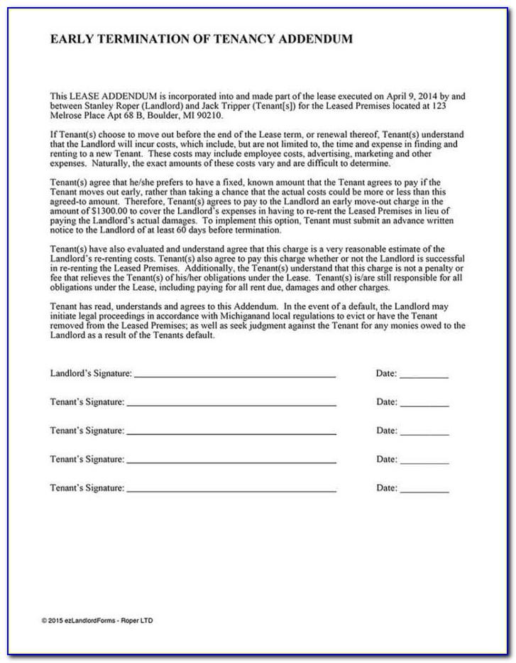 Example Contractor Agreement
