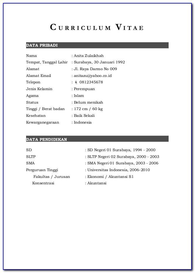 Format Curriculum Vitae Indonesia Doc