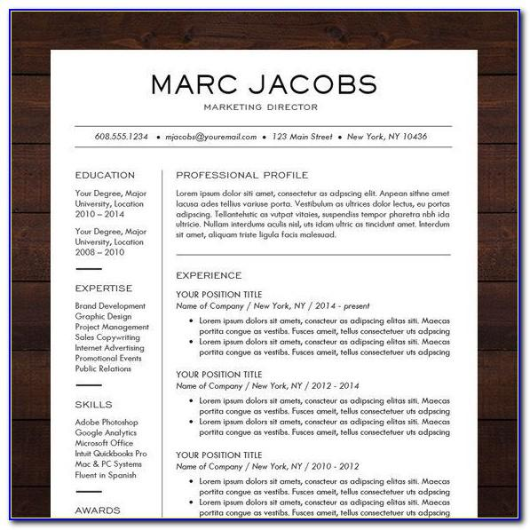 Professional Resumes Templates For Download