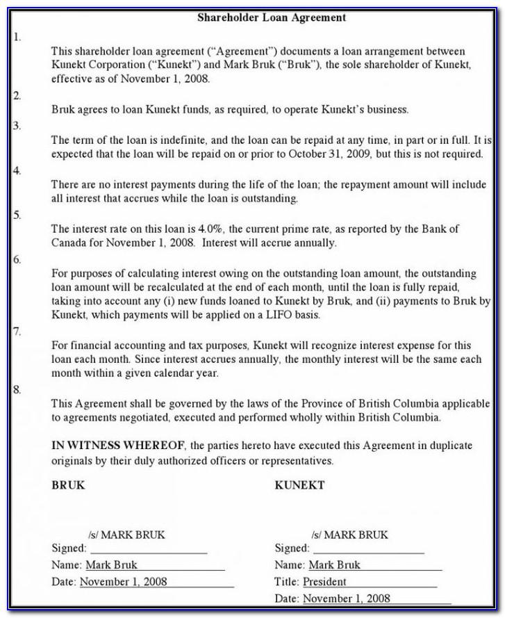 Shareholders Loan Agreement Template South Africa