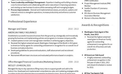 Template For Professional Curriculum Vitae