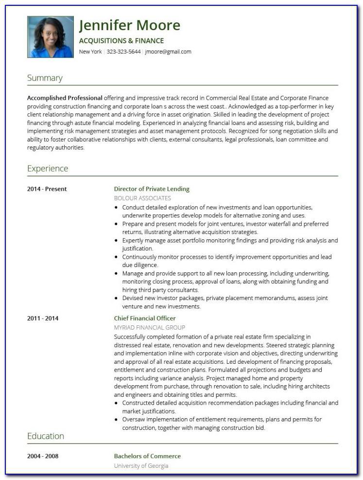 Template Professional Curriculum Vitae