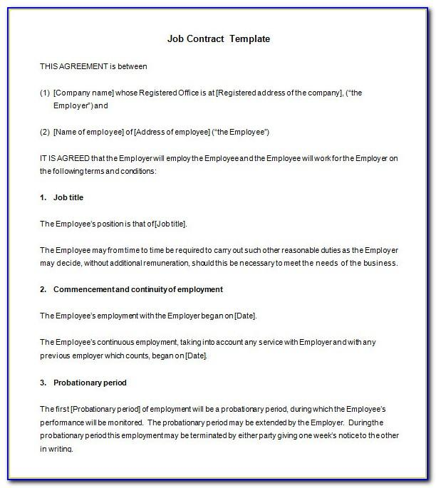 Temporary Employment Contract Template South Africa