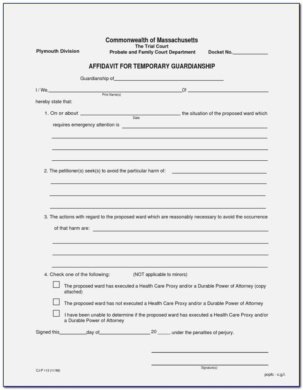 Temporary Guardianship Letter Sample