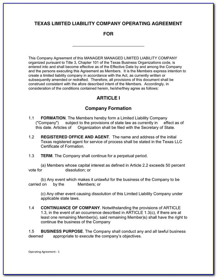 Texas Llc Articles Of Organization Template