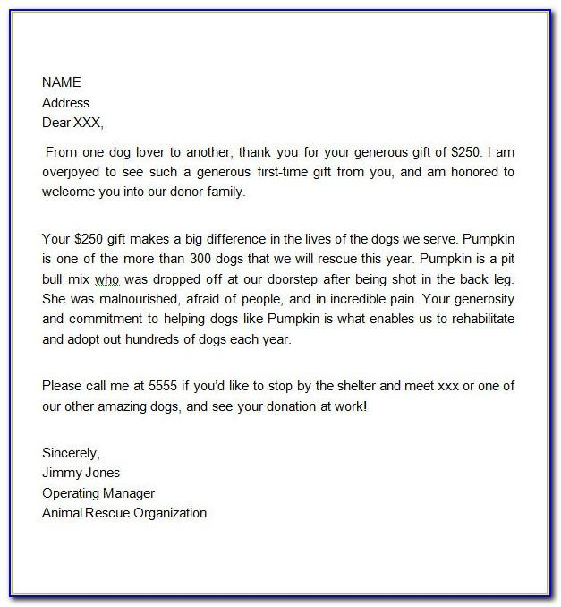 Thank You Donation Letter Example