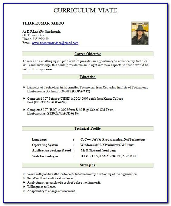 Top 10 Resume Formats For Engineering Freshers