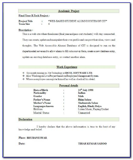 Top Best Resume Format Download