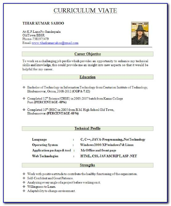 Top Best Resume Format For Freshers