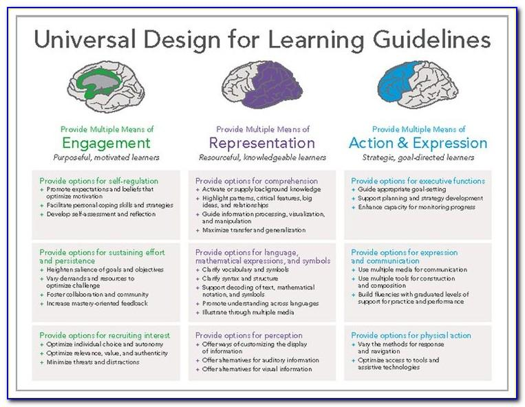 Universal Design Lesson Plan Sample