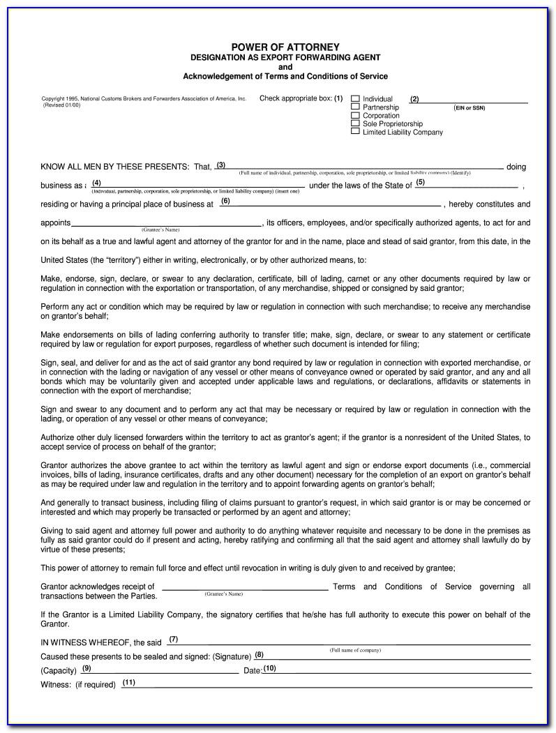 Us Customs Power Of Attorney Template