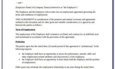 Basic Employment Contract Template Free Nz