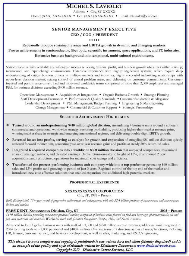 Senior Executive Resume Format