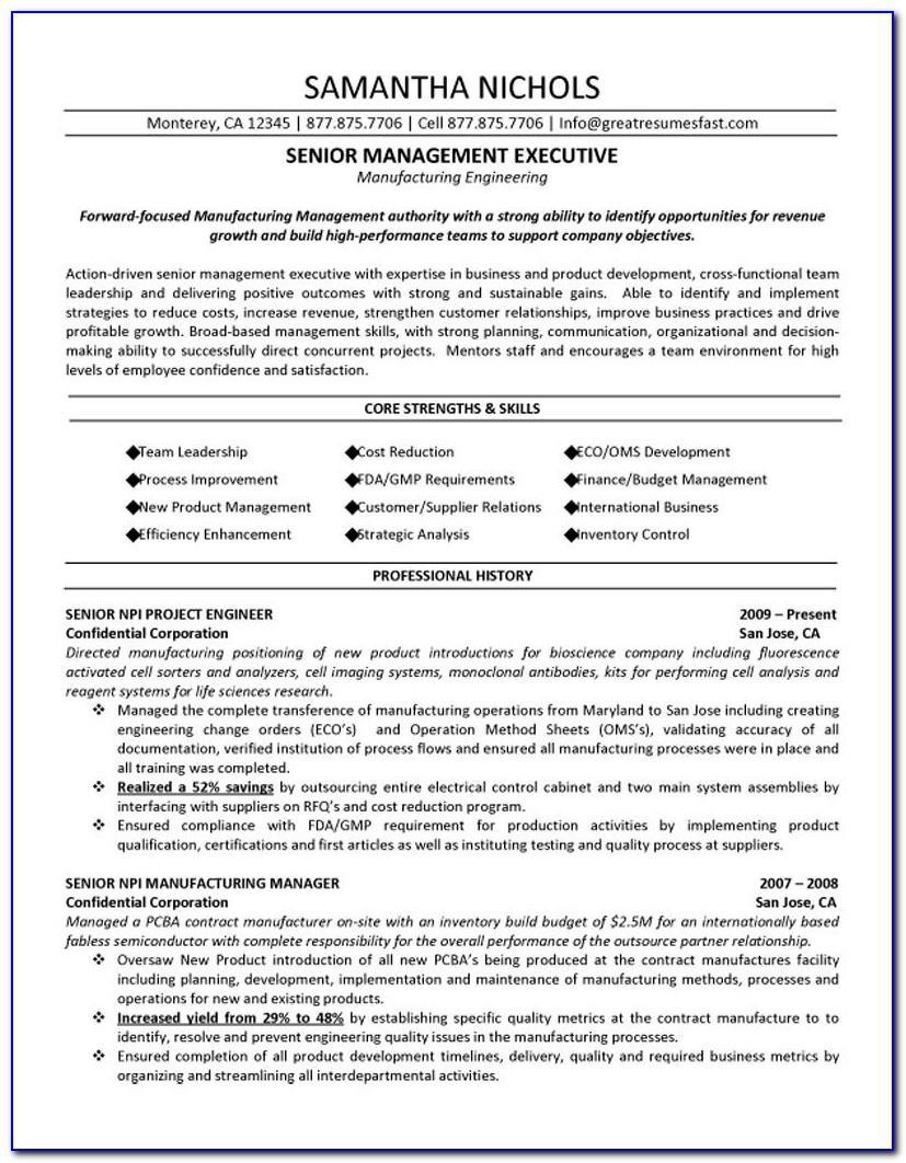 Senior Executive Resume Samples Free