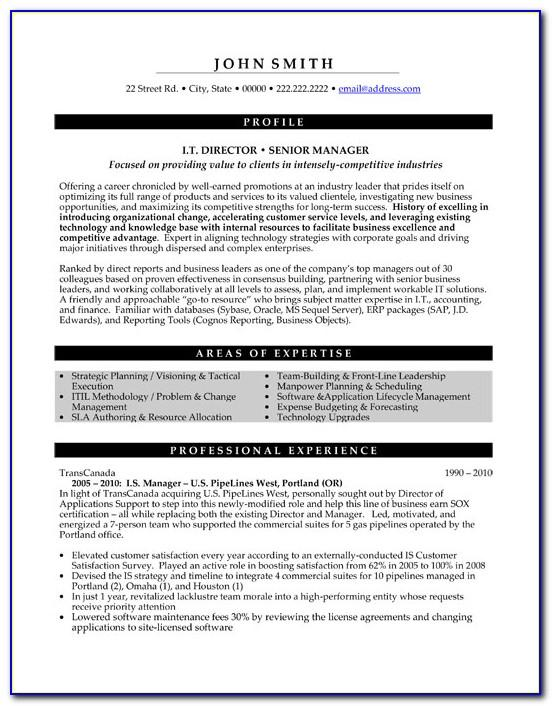 Senior Executive Service Resume Example