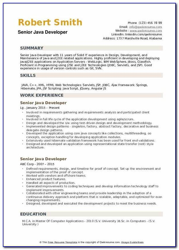 Senior Java Developer Resume Template