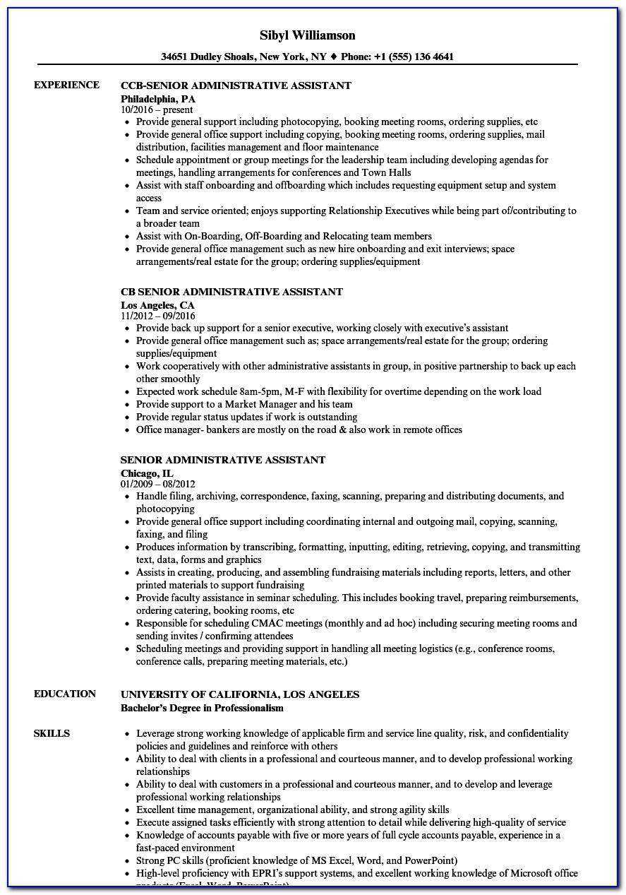 Senior Sales Manager Resume Templates