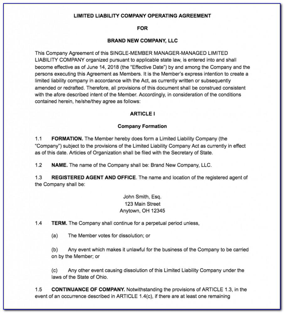 Single Member Llc Operating Agreement Template Minnesota