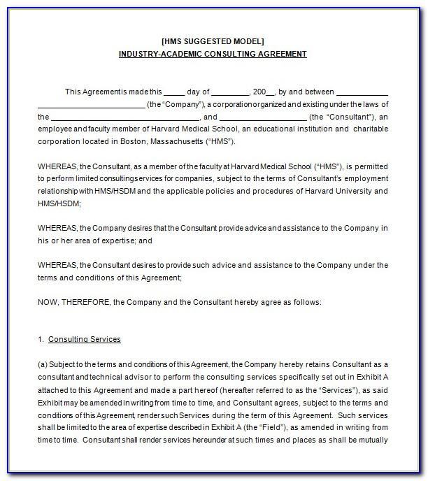 Software Consulting Contract Sample
