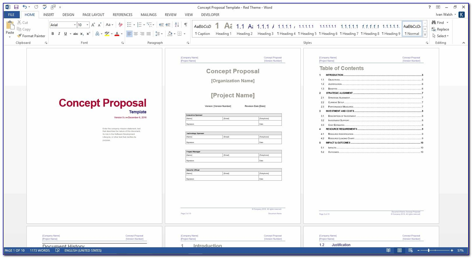 Software Development Proposal Template Free Download