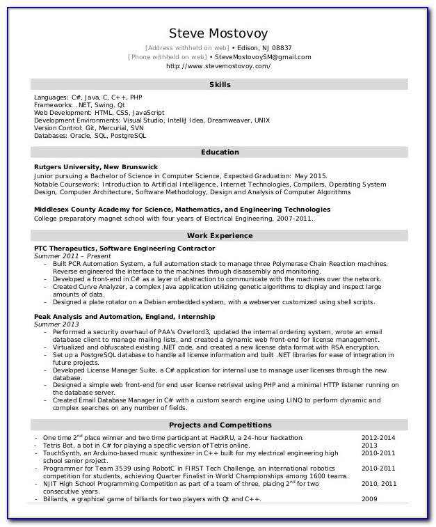 Software Engineer Resume Template Word