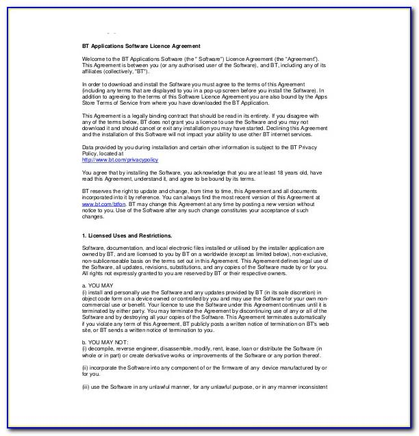 Software License Agreement Template Doc