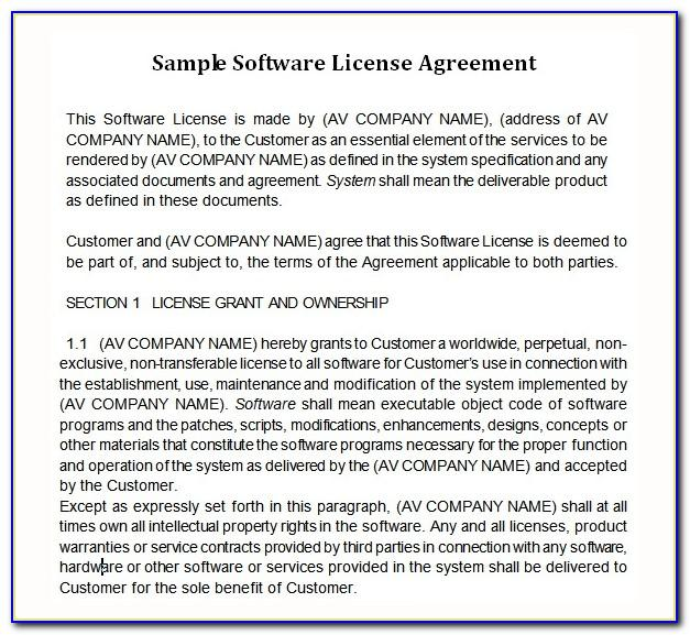 Software License Agreement Template Usa