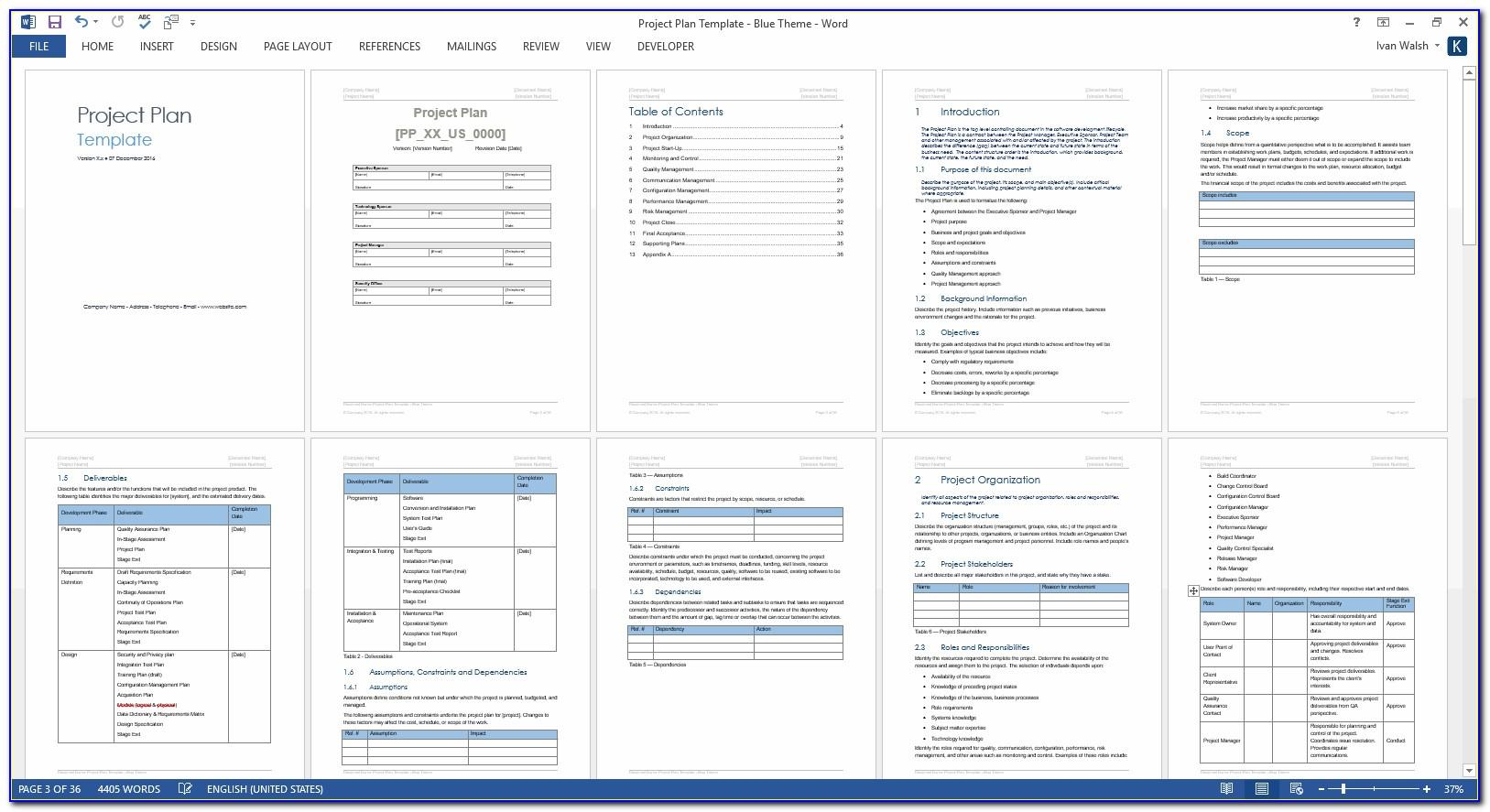 Software Project Plan Template Word