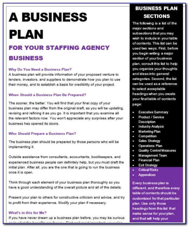 Staffing Agency Business Plan Template Free
