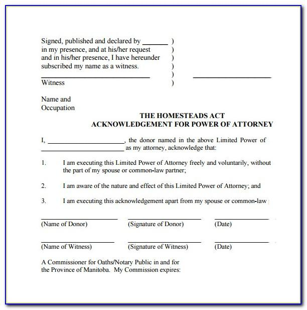 Standard Power Of Attorney Template