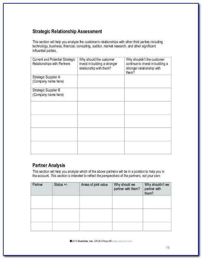 Strategic Account Management Plan Example