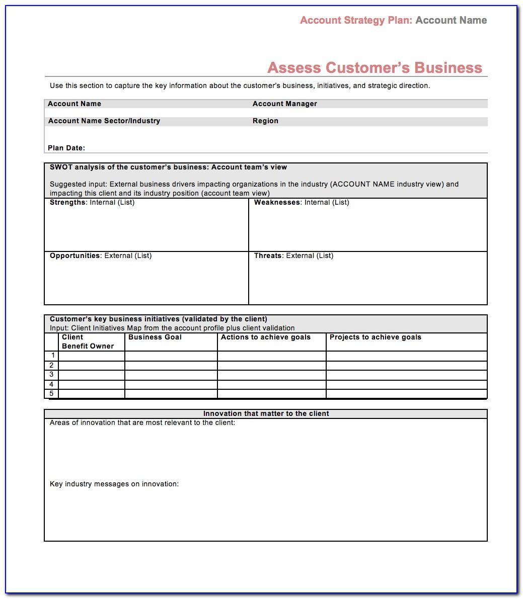 Strategic Account Plan Example