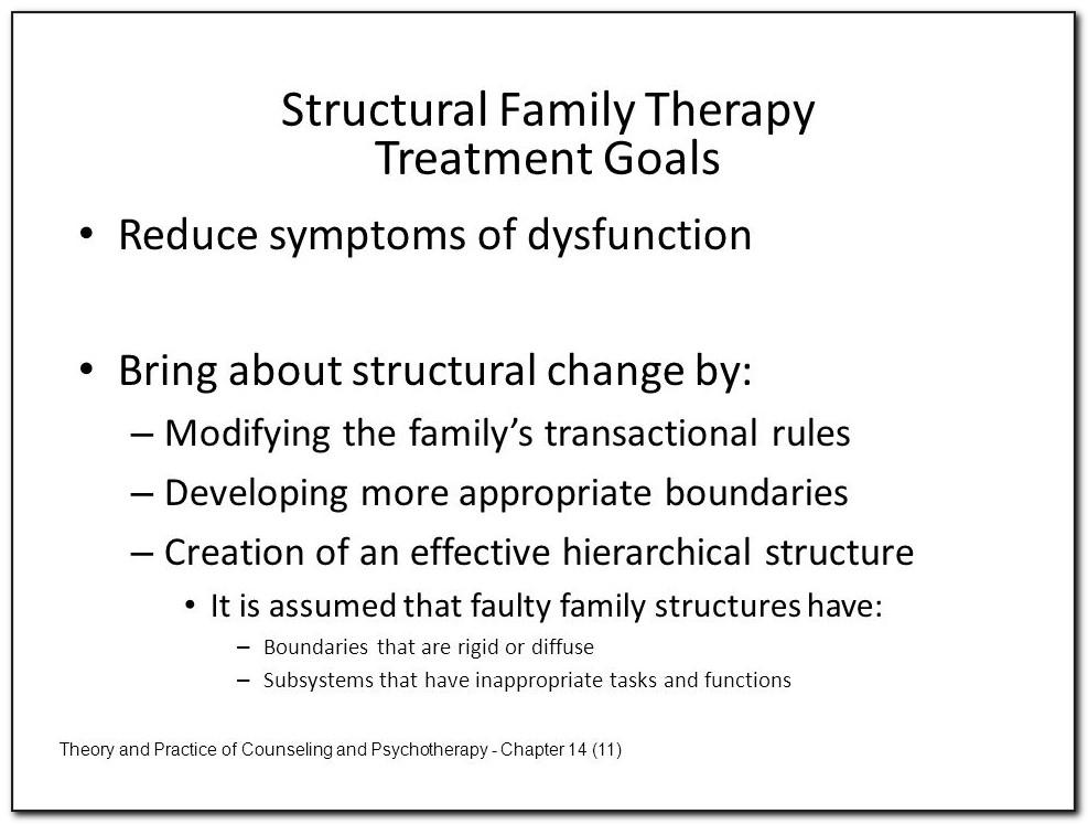 Structural Family Therapy Treatment Plan Sample
