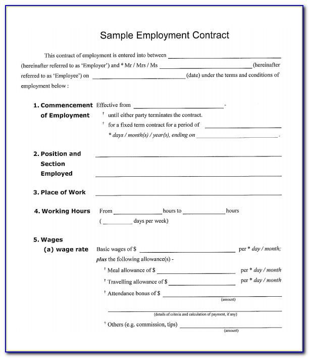 Employment Contract Template Simple