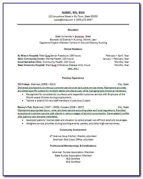 Resume Examples Free Printable