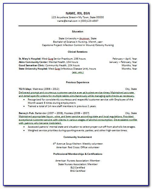 Resume Examples Free Printable