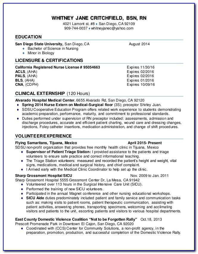 Resume Examples Rn New Grad